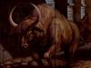 35 the-running-bulls